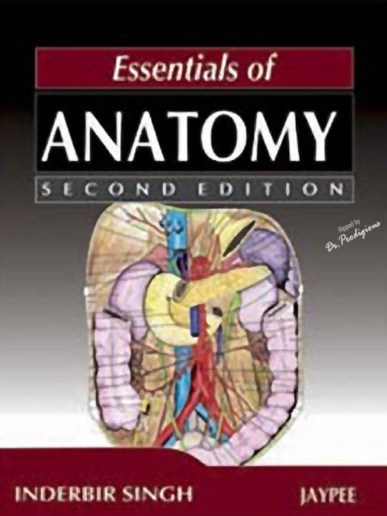 Essentials Of Anatomy  2nd Edition