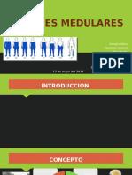LESIONES-MEDULARES