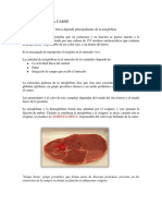 pigmentos-de-la-carne.pdf