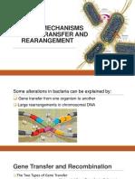 Natural Mechanisms for Gene Transfer and Rearangement