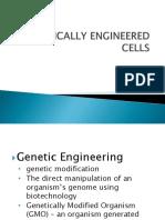 Genetically Engineered Cells