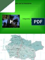 IX region de la araucania