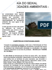 BAÍA DO SEIXAL-CUMPLICIDADES