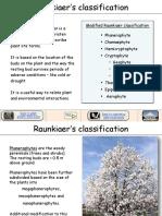 Formraunkiaer.pdf