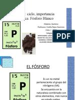 seminario-ppt-fosforo