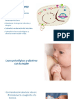 La Leche Materna.pdf