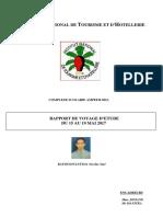 rapport VE.pdf