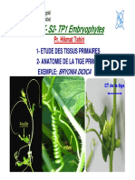 TP1 Embryophytes S2