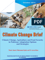 Climate Change Brief