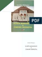 CORNELIU PARAUSANU Scurta Monografie a Comunei Gradistea