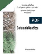 Apostila slides mandioca 2011.pdf