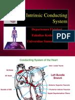 K-22 Fisio Intrinsic Conducting System_CVS-K22