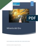 Minería Del Oro