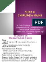 Curs 3 Chirurgia Mainii.malformatiile Congenitale. Infectiile Mainii Pptx