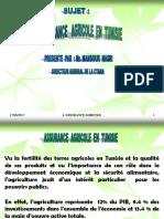 intervention-dir-gen-assur-agricole-vers-francais.ppt