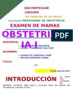 examen de mamas.docx