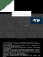 Lab. presentación.pptx