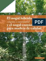 Ficha Nogal