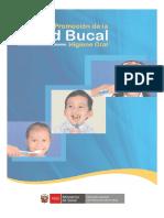 Modulo de Salud Bucal (1)