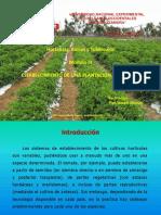 ESTABLECIMIENTO DE UNA PLANTACIÓN HORTÍCOLA