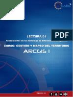 Lectura 01 Fundamentos de La Informacion Geografica