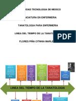 Linea Del Tiempo Flores Tanatologia 12enf