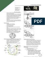 06 - Platelet Disorders and Fibrinolysis.pdf