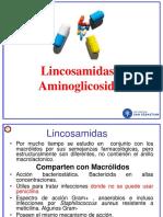 Farmacologia Clase 28 AB 3 Aminoglicosidos uss