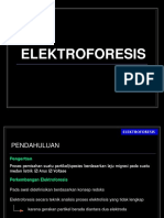 3-UAS-Elektroforesis