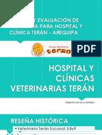 Análisis y Evaluación de Estrategia Para Clínica Terán