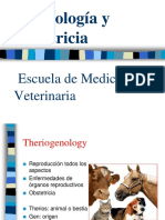 01- Ginecologia y Obstetricia