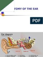 Anatomy Ear