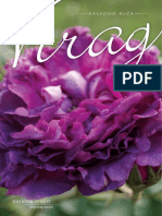 Katalog Ruza 2016