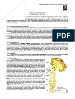 NEUROANATOMIA 21 - Grandes Vias Eferentes (2012).pdf