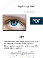 The Eye Optics