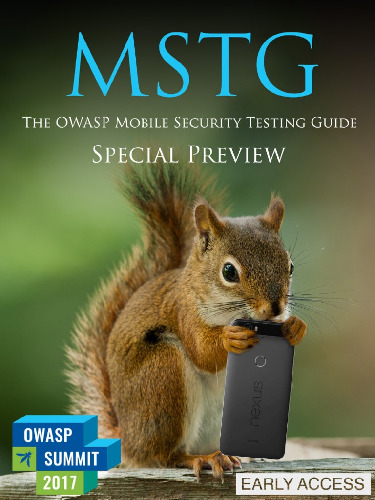 Mobile Security Testing Guide Preview | Cryptography | Public Key