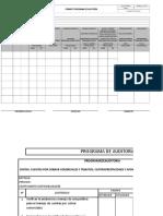 Formato Programa de Auditoria