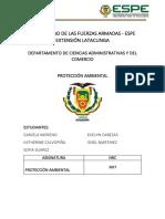 PROTECCION AMBIENTAL-INFORME DE SIEMBRA DE ARBOLES