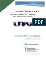 Dasometria , informe Cubicacion.