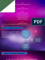 Registro-de-Neutron.pptx