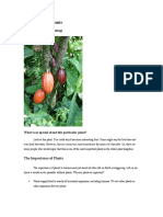 reading selection import of plants ck12