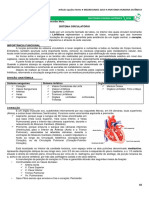 06 Sistema Circulatório