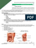 08 Sistema Digestório