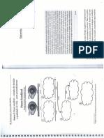Cap_II_e_III_Estrategias_Psicoter_picas_e_a_3_onda_em_TC.pdf