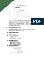 Informe Psicopedagógico Patricia Achurra