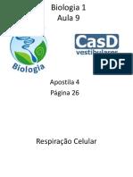 aula9casdvestrespiraocelular-130508152329-phpapp02