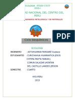 CICLO BIOQUIMICO CURI.docx