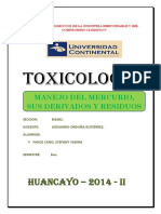 Medidas Preventivas Contra El Mercurio