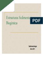 Estructuras Biogenicas_2011
