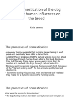 the domestication of the dog and the human